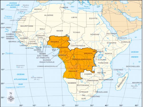 Piraterie maritime en Afrique : Quelles réponses ?