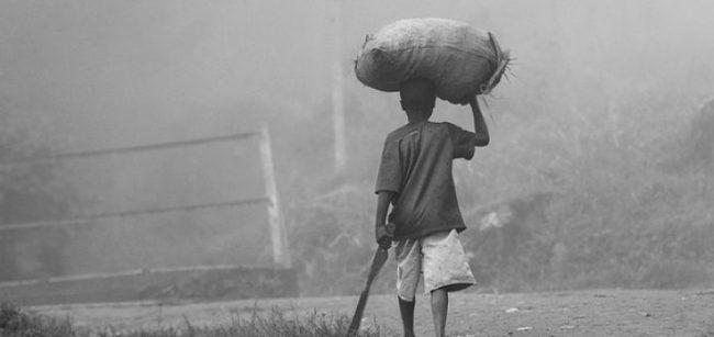 L'agriculture africaine ruinée par le néolibre-échange européen