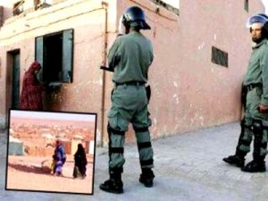 Freedom House : Le Sahara occidental occupé est un territoire « non libre »
