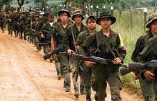 Colombie : les FARC interrompent la trêve