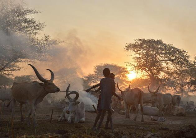Soudan du Sud : guerre dans la guerre