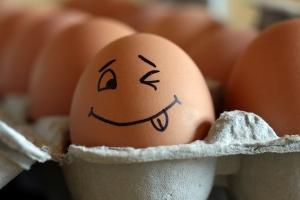 L'œuf de Macron : Le Tribunal du blog appelé à la rescousse