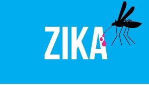 Le virus Zika ne provoque pas de malformations congénitales – Mais les produits utilisés pour le combattre, probablement !