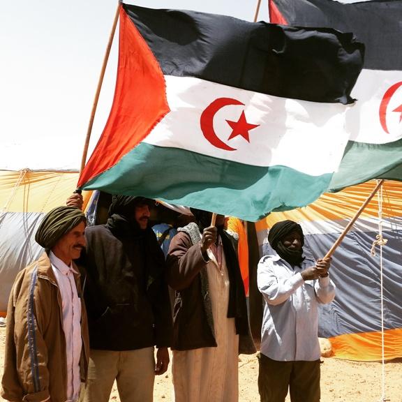Catherine Constantinides : «L'admission du Maroc à l'Union africaine est une honte !»