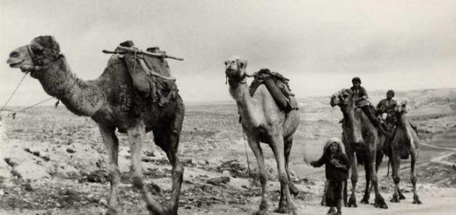 La nouvelle Route de la soie passera par la Syrie