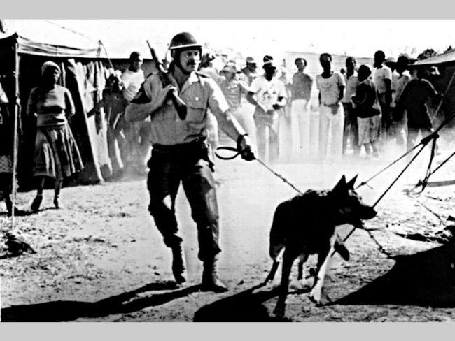 Afrique du Sud : les cadavres européens de l'apartheid sortent des placards