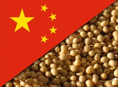 Barrières douanières chinoises sur le soja américain: Pékin cible la base électorale de Trump