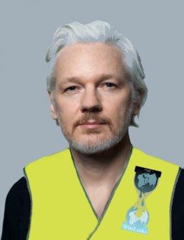 Wikileaks, Julian Assange et gilets jaunes
