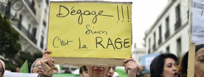 Lettre d'un vieillard algérien myope à la jeunesse algérienne illuminée (Tribune libre)