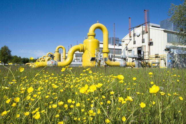 Développement du gaz naturel et de l'énergie en Afrique subsaharienne