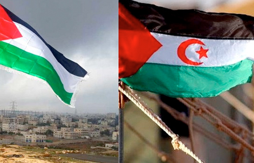 ONU - L'Afrique du Sud et Cuba appellent à la fin de l'occupation au Sahara occidental et en Palestine