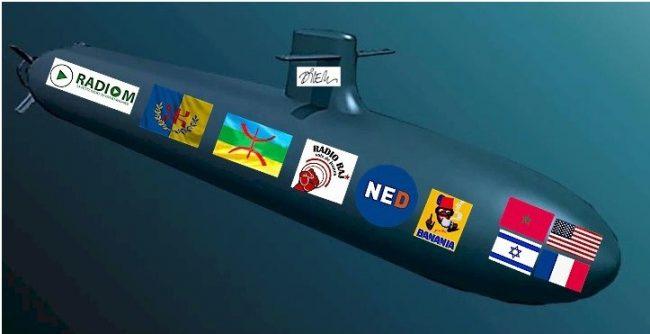 TRIBUNE - Les « sous-marins » de la politique et la politique des « sous-marins »